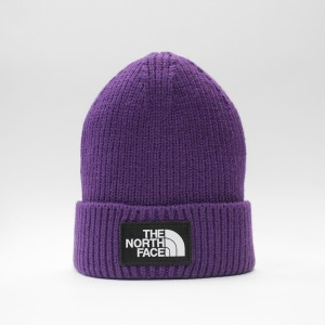 Шапка TNF Logo Box Cuffed Beanie Hero Purple (T93FJXN5N)