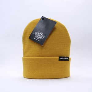Шапка Dickies Alaska Gold Orange (410153)