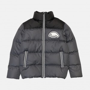 Куртка Anteater Downjacket Combo Grey