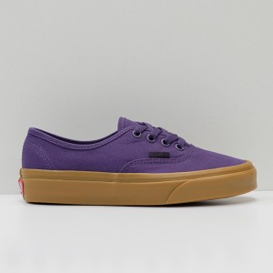 Кеды Vans Authentic Mysterioso/Gum (VA38EMVKT)