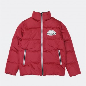 Куртка Anteater Downjacket Red