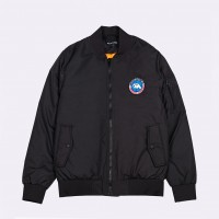 Куртка Anteater Bomber Black