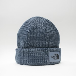 Шапка TNF Salty Dog Beanie Blue Wing Teal/Bluestone (T93FJWG8E)